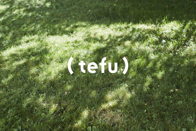 tefu_top_logo